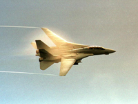 An F-14D Tomcat of Fighter flying over the Persian Gulf - US Navy